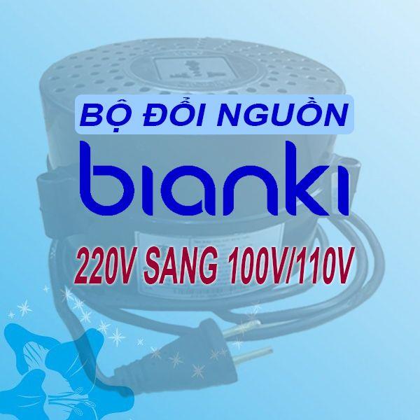 Bộ đổi nguồn 220V sang 110V - BIANKI